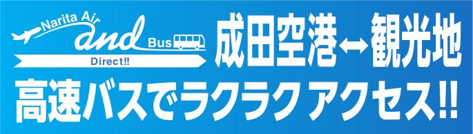 バス・エアーツアー